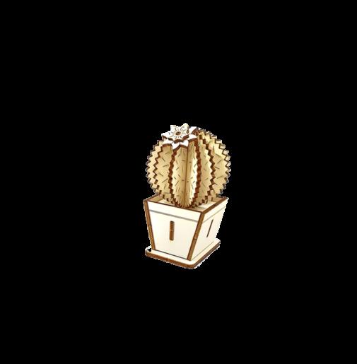 Cactus – Ball & Flower E