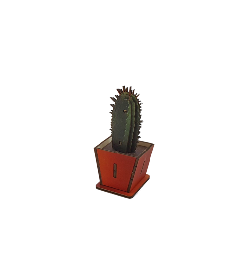Cactus – Spikes B – colored