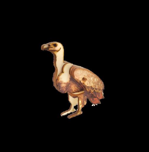 Vulture – colored
