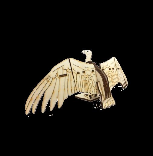 Vulture wings