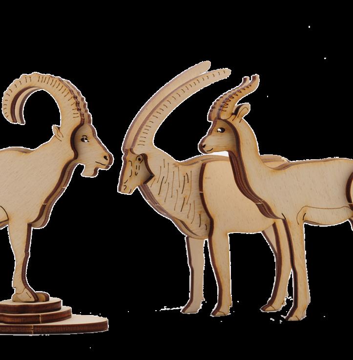 Gazelle Dorcas (DIY)