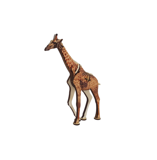 Giraffe / colored