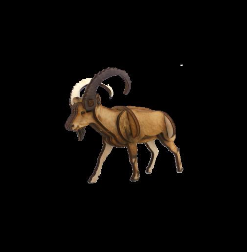 Ibex – colored