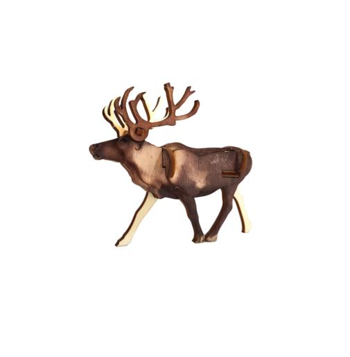 Reindeer – colored