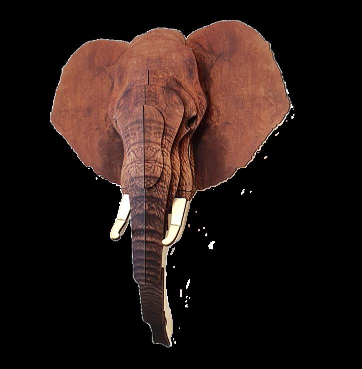Elephant 3D portrait