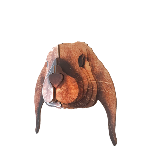 Lop rabbit 3D portrait