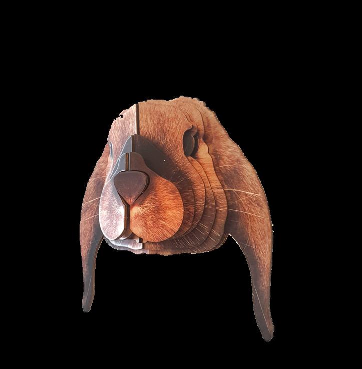 Lop rabbit 3D portrait