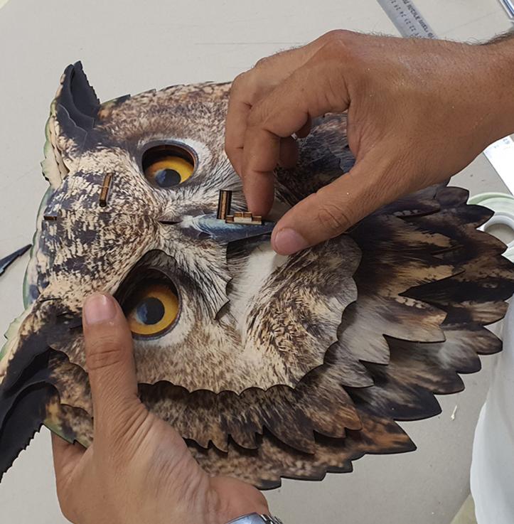 Owl 3D portrait