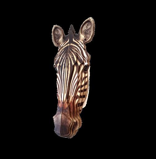 Zebra 3D portrait
