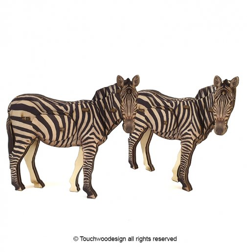 Zebra / colored