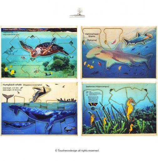 Sea World Puzzles – Set of 4